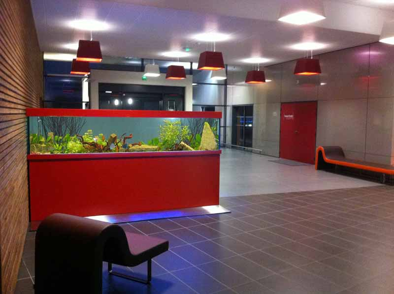 Sur mesure for Aquarium interieur