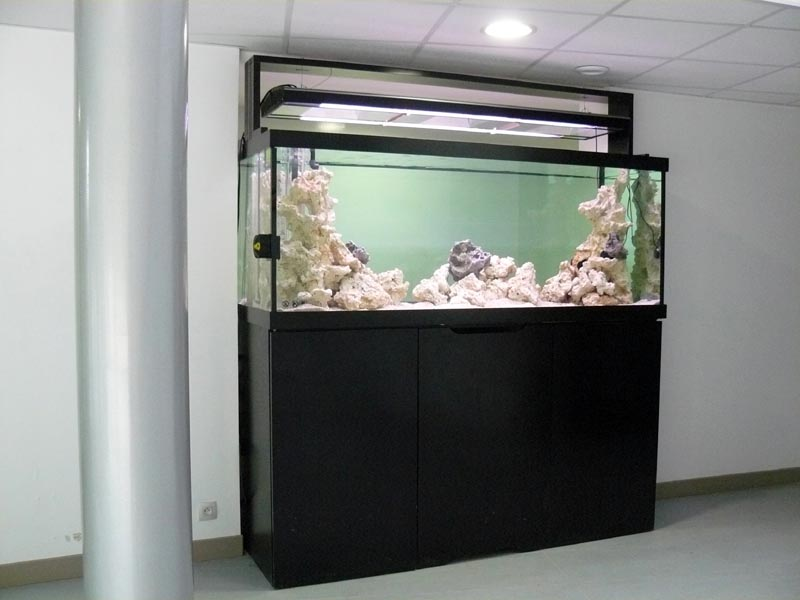 aquarium eau douce mesure