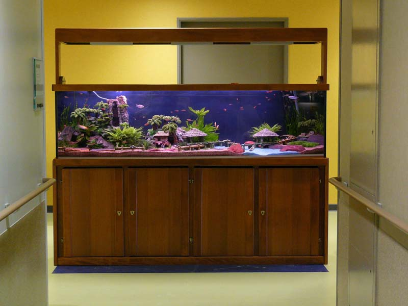 Sur mesure for Aquarium maison