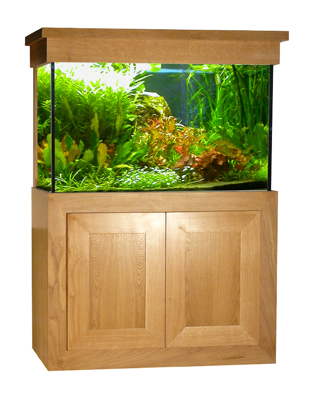 d coration aquarium 100l pas cher 27 nantes aquarium pas cher botanic aquarium design. Black Bedroom Furniture Sets. Home Design Ideas