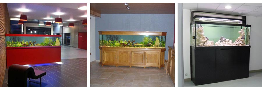 Fabricant d aquarium sur mesure 28 images aquarium eau for Meuble aquarium ikea